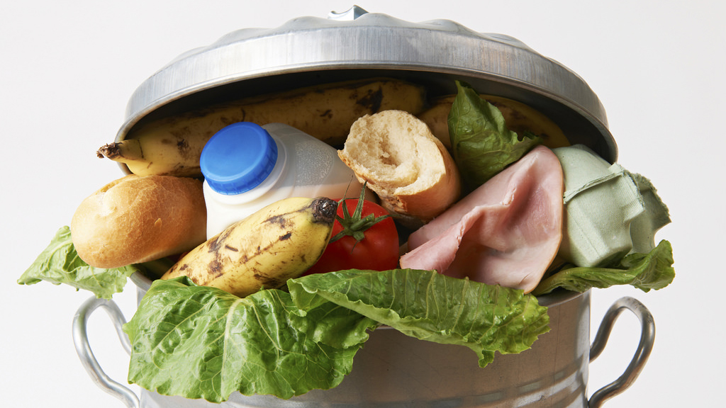 Fresh food in garbage can to illustrate waste.