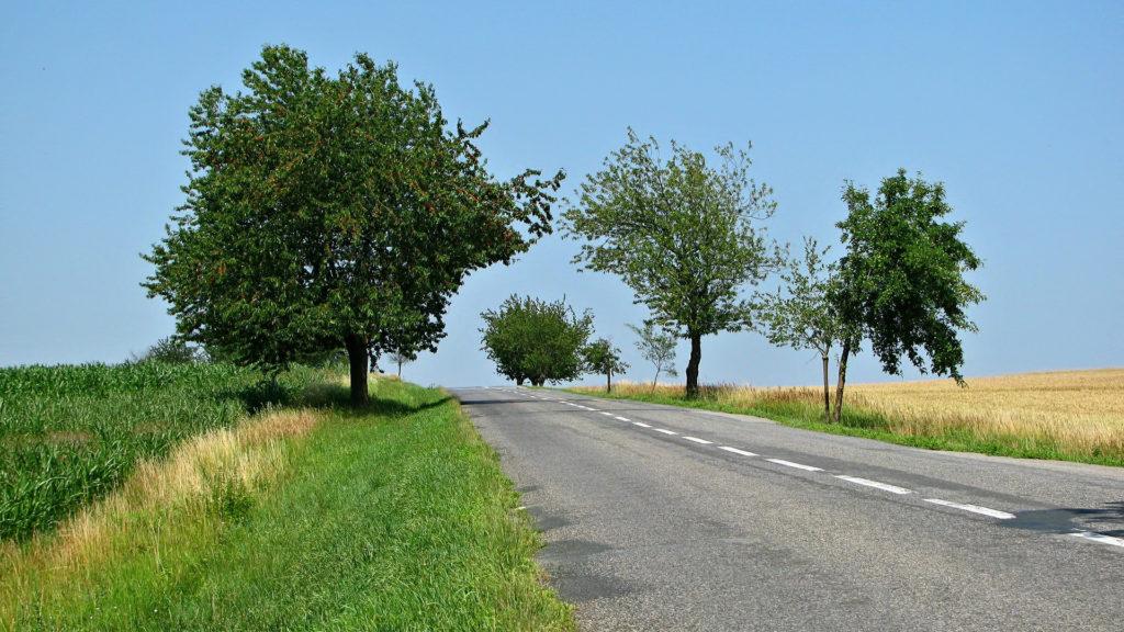 Reutilizar residuos construir carreteras
