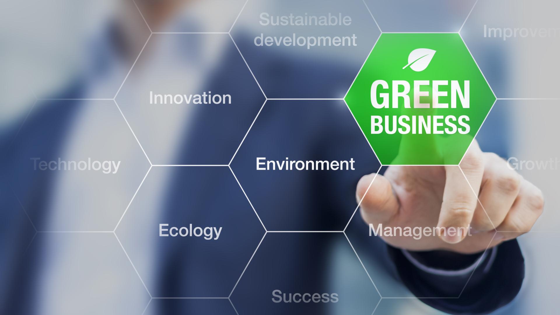 Desarrollo sostenible y empresa
