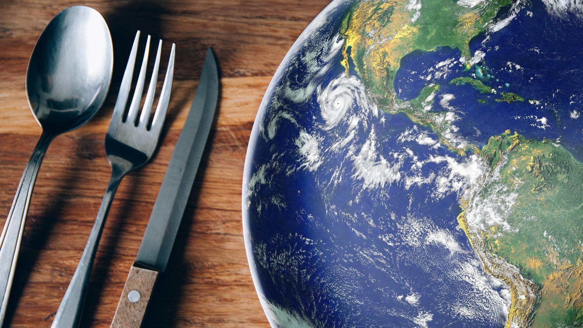 Cap a una alimentació sostenible