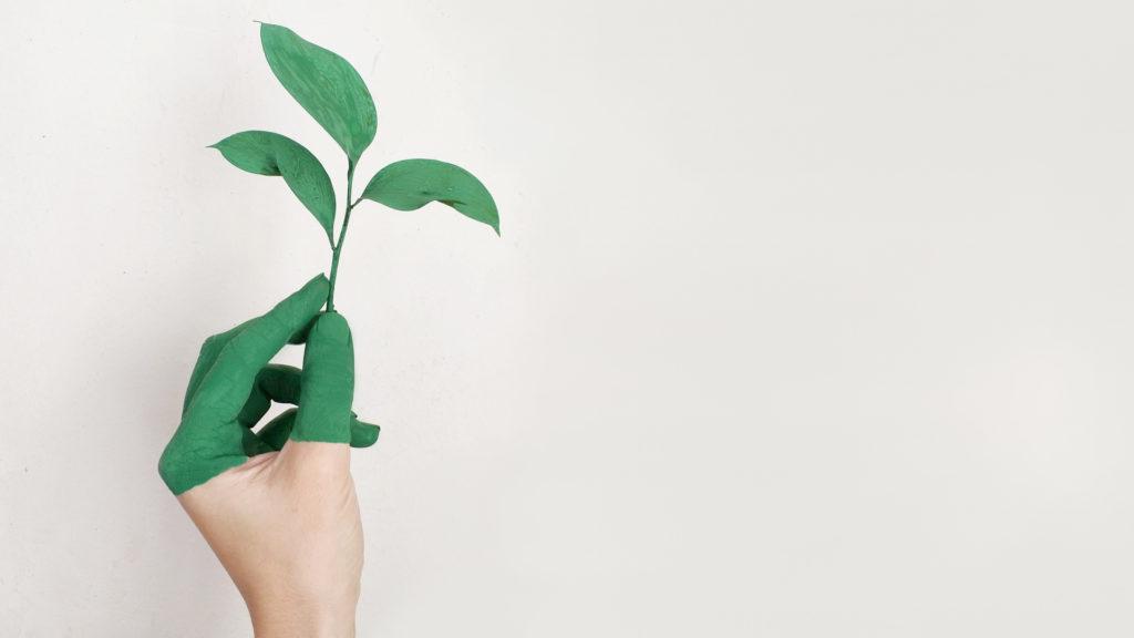 Ecodisseny i cicle de vida des de l'òptica empresarial