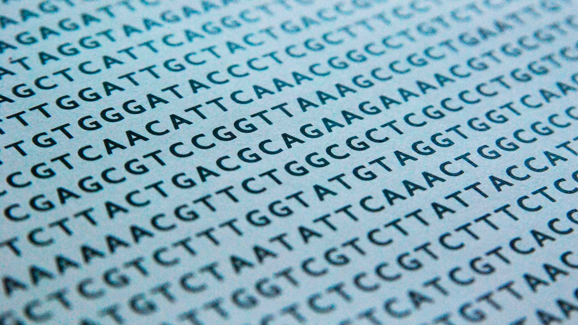 DNA sequence alignments