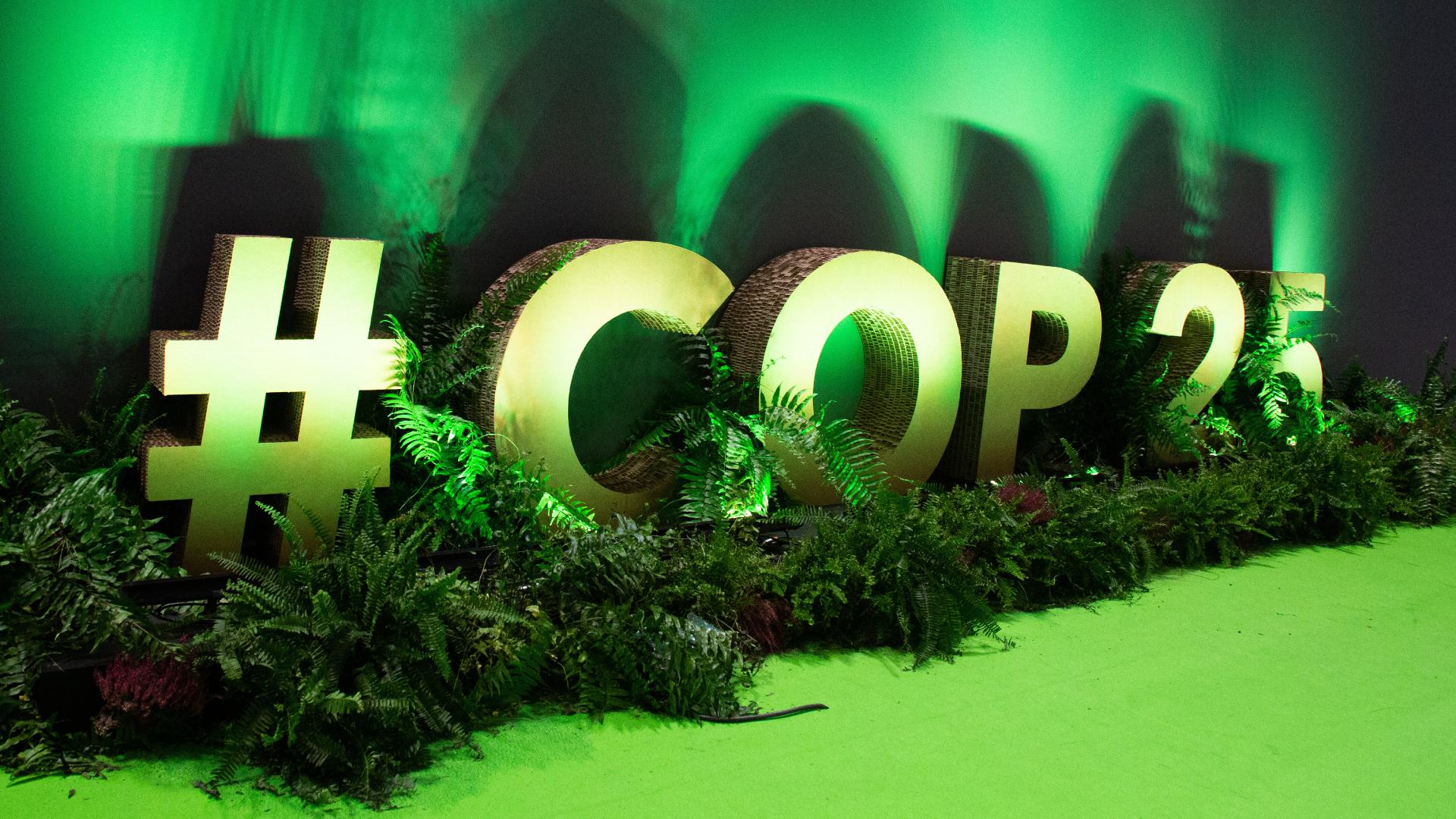 La COP és un exemple de governança global únic