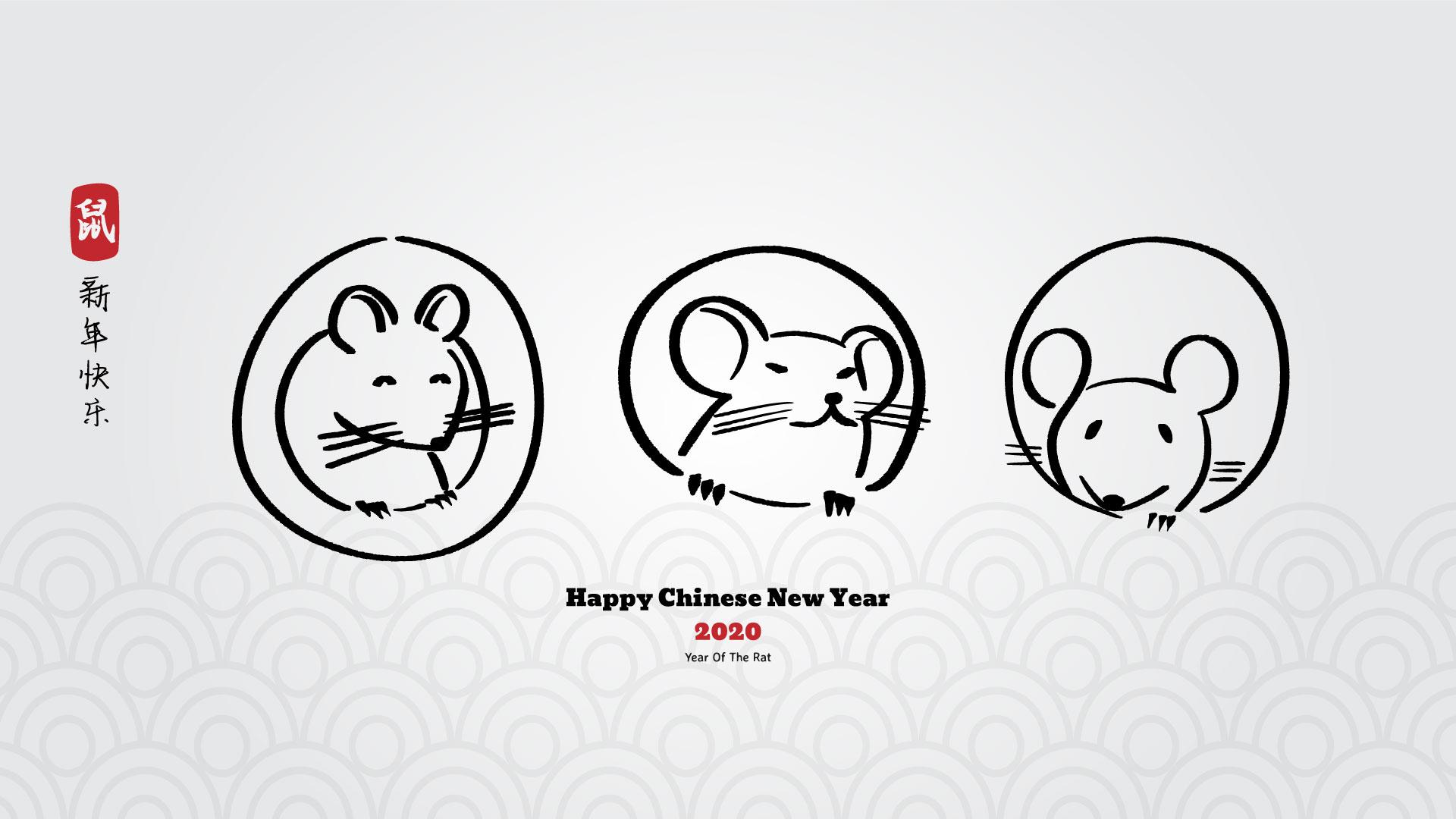 Any nou xinès