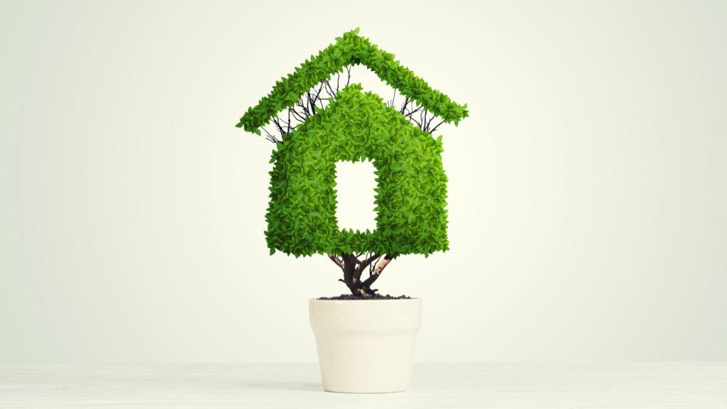 Solucions per a combatre la crisi climàtica des de casa