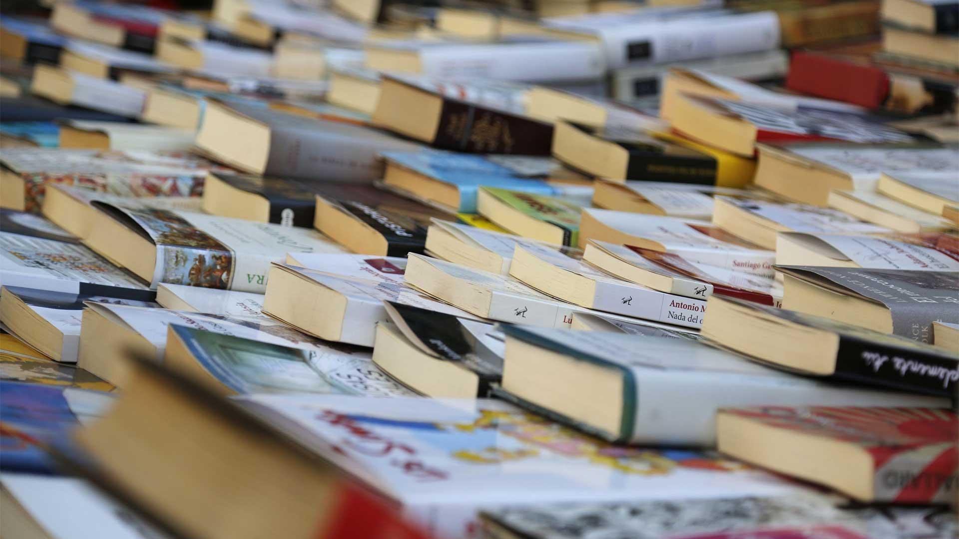 llibres sant jordi 5