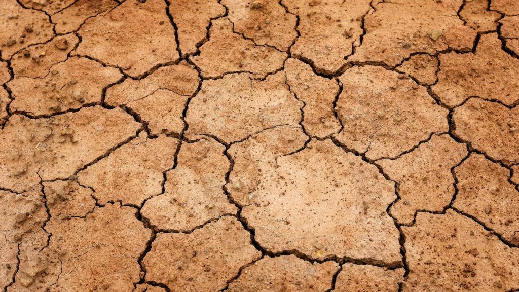 El suelo, otro gran damnificado por el cambio climático