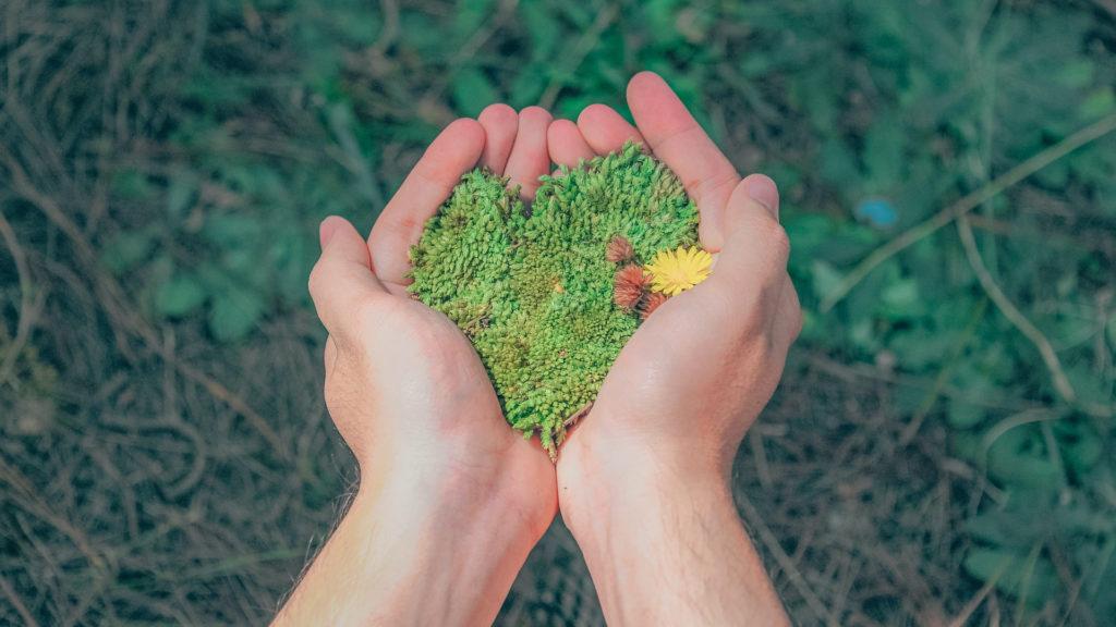 """Día Mundial del Medio Ambiente 2020 """"Llegó la Hora de la Naturaleza"""""""