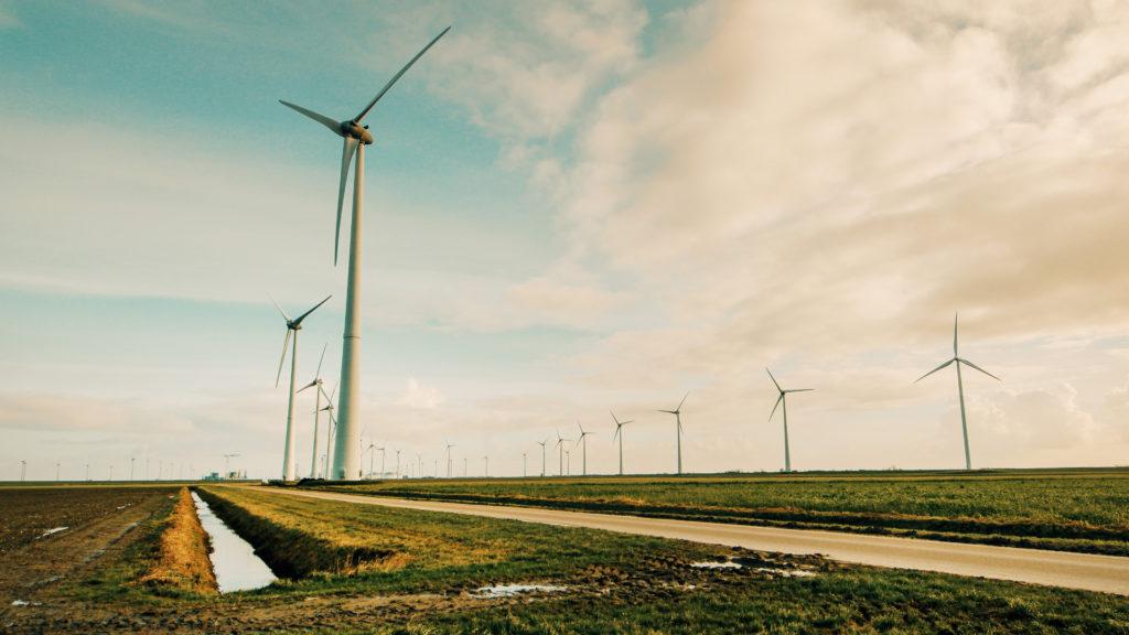 ¿Cómo es la ley contra el cambio climático aprobada por el Consejo de Ministros?