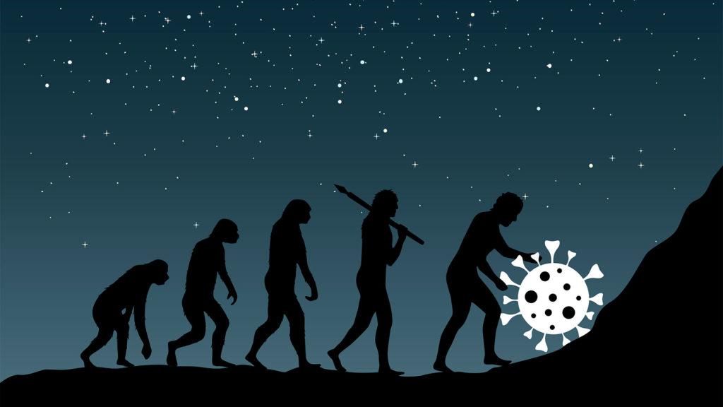 Evolution COVID19
